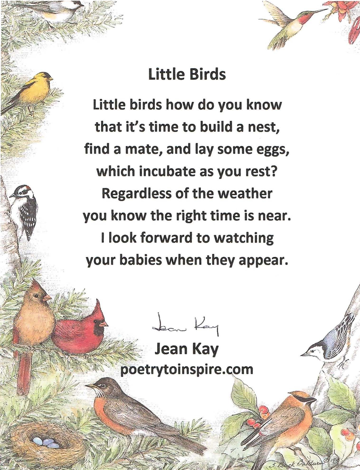 Little Bird Poem